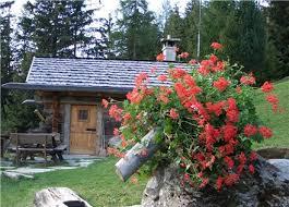 baita fiori Internet salverà la montagna? Le giovani famiglie ritornano in montagna.