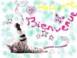 mes minous Bienvenue1