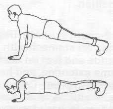 Sample Routine - 3 day No equipment Bodyweight: Intermediate Pushup