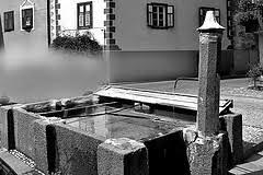 3783870359 5b39bca017 m Predazzo, dopo il forte temporale si consiglia di non bere l'acqua del rubinetto.