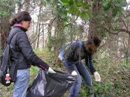 """giornata%2520ecologica Predazzo, 80 volontari per la giornata ecologica, iniziativa by: """"Rico dal Fol"""""""