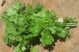 الزبادى وعسل النحل italian-parsley.jpg